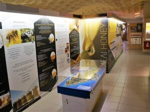 Rhodes Tours, Bee museum