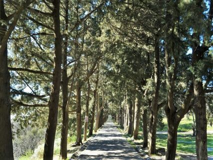 Rhodes tours for natural attractions